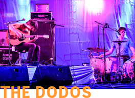 PAST-GIGS-dodos